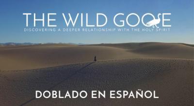 WildGoose Sp